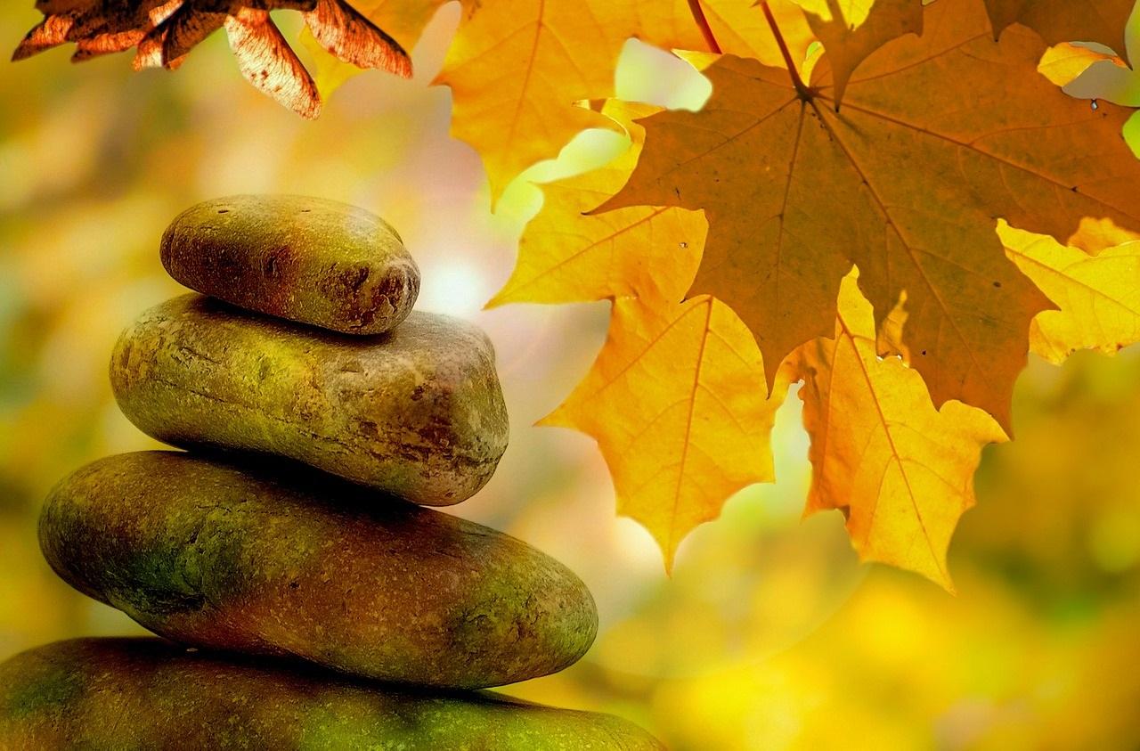 График на есенните курсове по йога